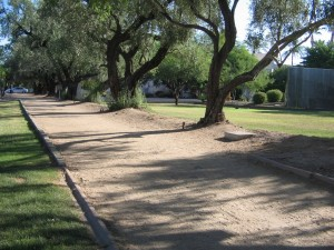 Murphy Bridle Path North Central Avenue Corridor Phoenix