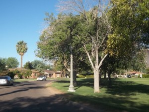 Country Club Park Oval in Historic Central Phoenix